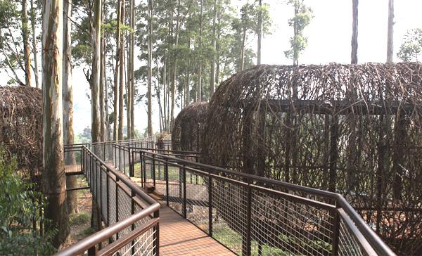 Lutung Kasarung. Restoran yang ada di area Dusun Bambu yang kasih kita sensasi  berbeda. (picture source: dusunbambu.com)